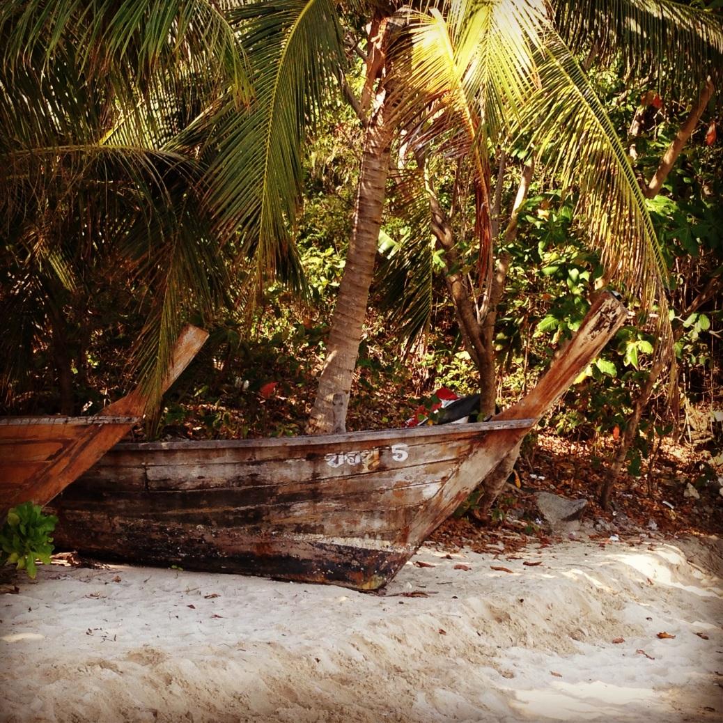 beach find!